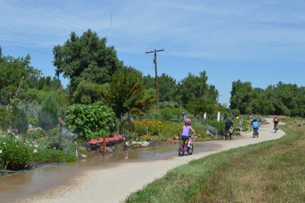 Windsor Family Bike Ride