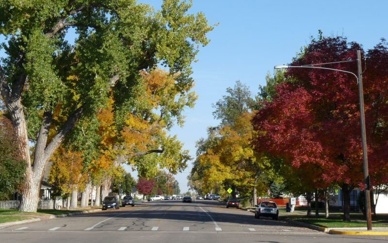 windsor-walnut-street-fall